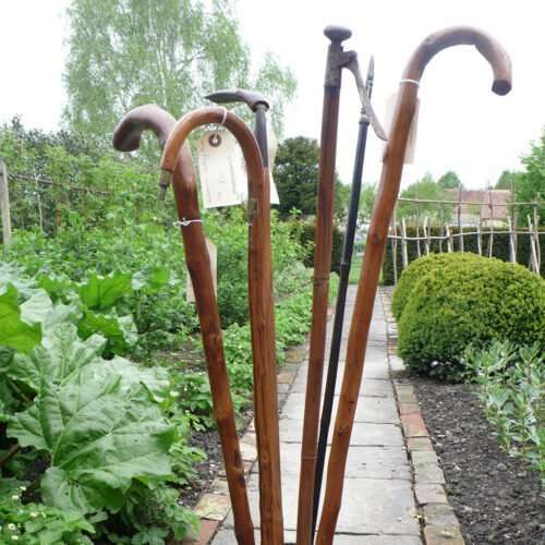 Gardening Walking Sticks